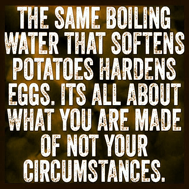 Boiling Water: Hardens Eggs Softens Potatoes